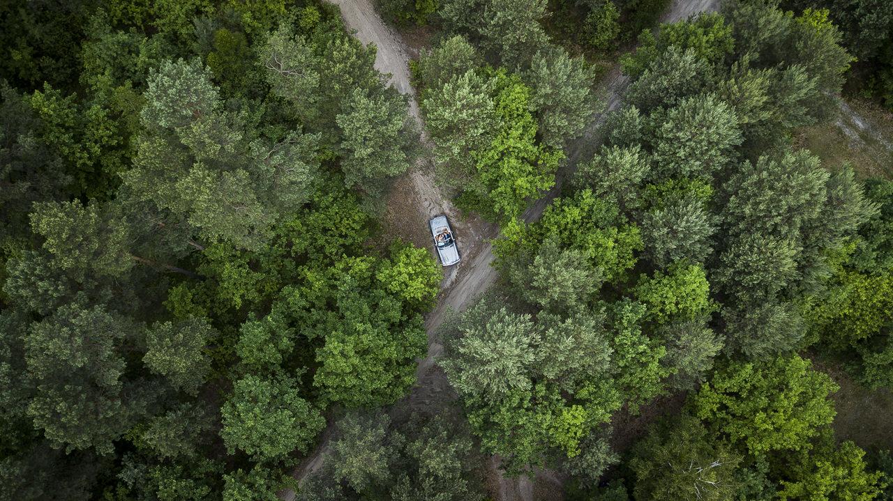 Zdjęcie lasu z drona